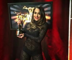 bella, nikki, and slammy awards image