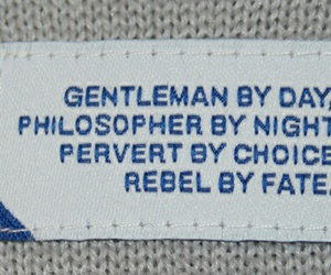 quotes, rebel, and gentleman image