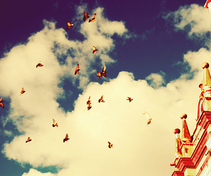 butterflies, sky, and clouds image