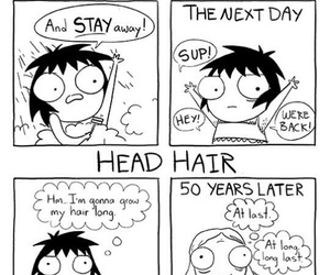 funny, sarah andersen, and hair image