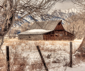 nikon D700, snow, and wyoming image