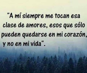 love, frases, and amores image