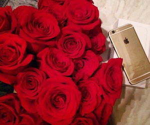 phone, red, and rosas image