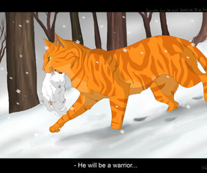 cats, snow, and warrior image