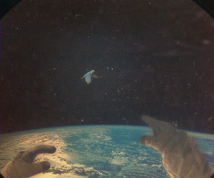 bird and space image