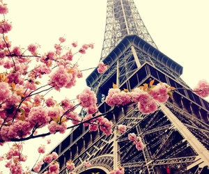 floral, paris, and pink image