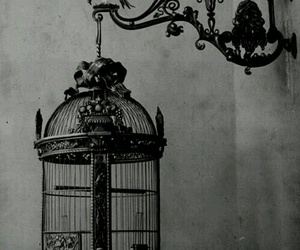 art, black and white, and old image