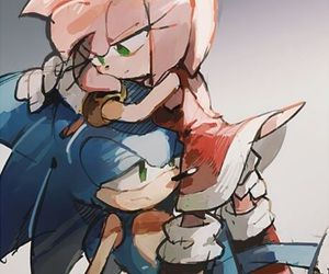 Sonic the hedgehog, amy rose, and sonamy image