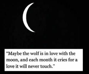 wolf, moon, and quote image