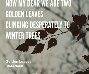 golden leaves, passenger, and sad image