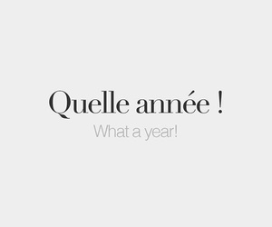 french words, vocabulary, and what a year image