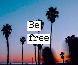 california, free, and text image