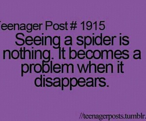 funny, purple, and spider image