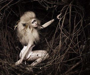 ANTM and alison harvard image