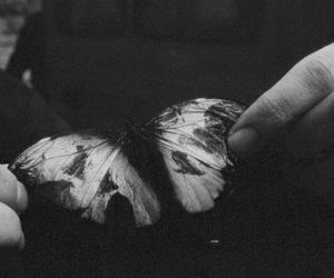 dark, cute, and beautiful image