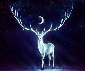 deer and space image