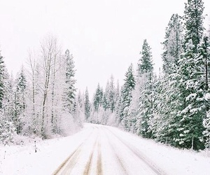roads, snow, and snowing image