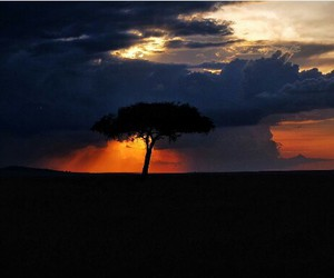 africa, nature, and beautiful image