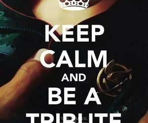 tribute, the hunger games, and keep calm image