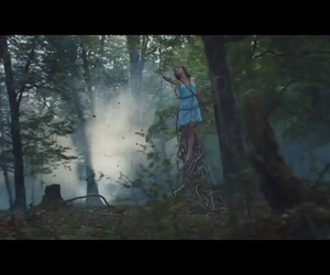 forest, Taylor Swift, and vevo image