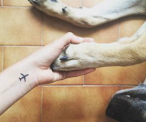 adorable, plane, and tattoo image