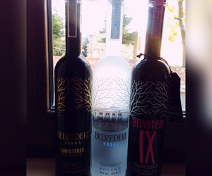 alcohol, friends, and belvedere image