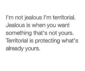 jealous, quotes, and territorial image