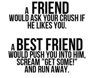 friends, best friends, and crush image