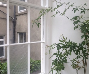 plants, aesthetic, and white image