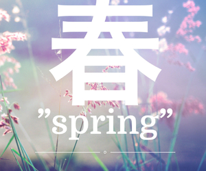 flowers, japanese, and spring image