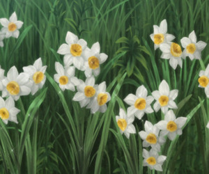 daffodils, flowers, and nature image