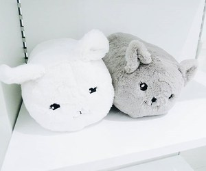 white, cute, and grey image