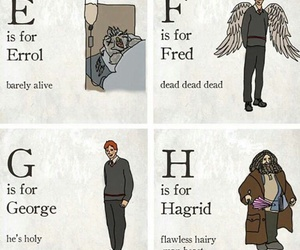 harry potter and hp image