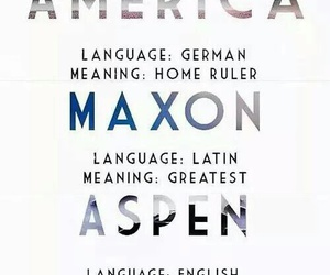 america, book, and the selection image