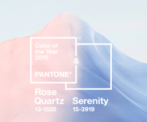 2016, color palette, and design image