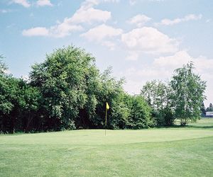 golf, hipster, and indie image