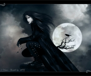 crow, dark, and gothic image