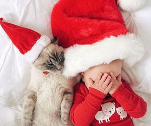 baby, christmas, and cat image