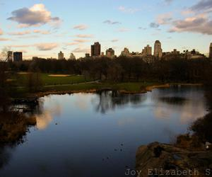 Central Park, new york city, and photography image