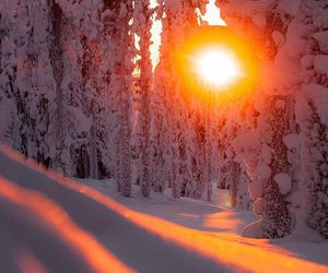 artic, beautiful, and magical image