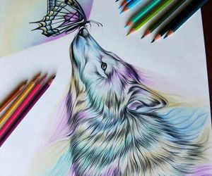 wolf, art, and butterfly image