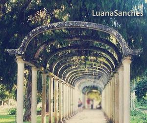 Image by Luana