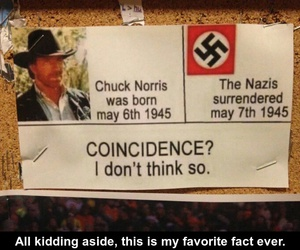 lol, chuck norris, and funny image