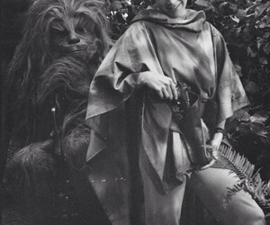 photography, chewbacca, and black & white image