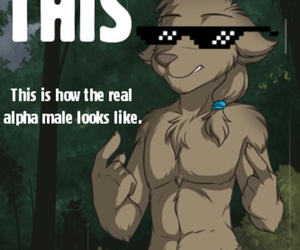 wolf, twokinds, and swag image