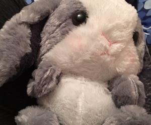 bunny, kawaii, and stuffed animal image