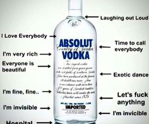 vodka, absolut, and drunk image