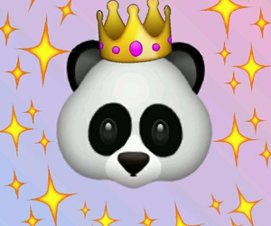 pandas beautiful wallpers image