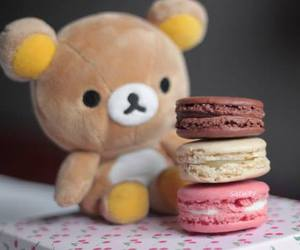 cute, sweet, and macaroons image