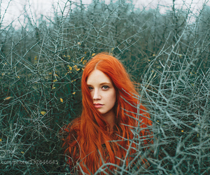 girl, forest, and redhead image